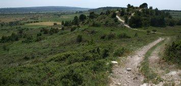 collines ensérune